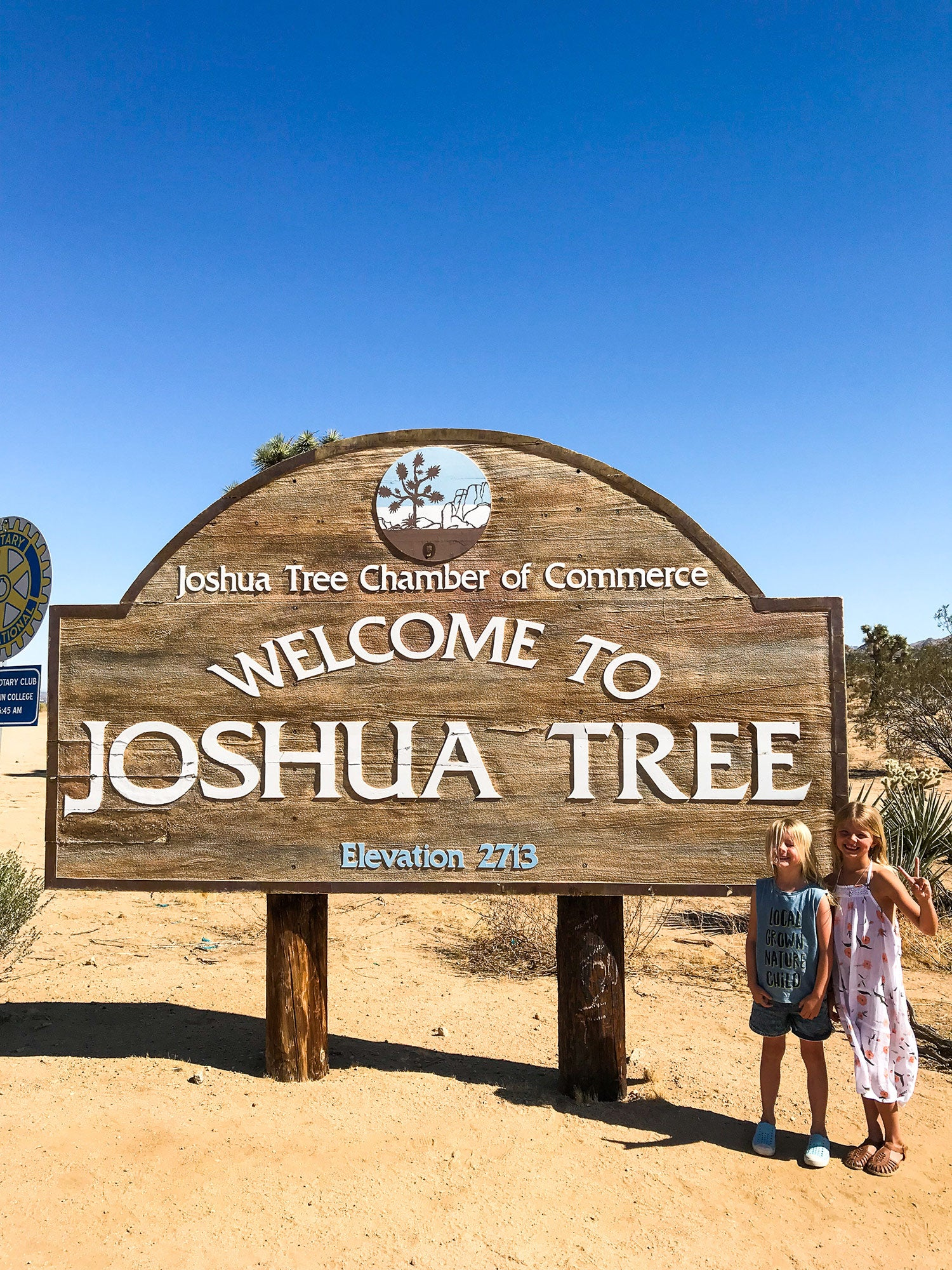 Exploring Joshua Tree with the Gunns