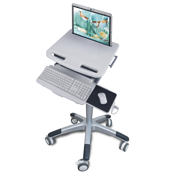 Medical Laptop Cart With Lock Hsc01 Rife Technologies