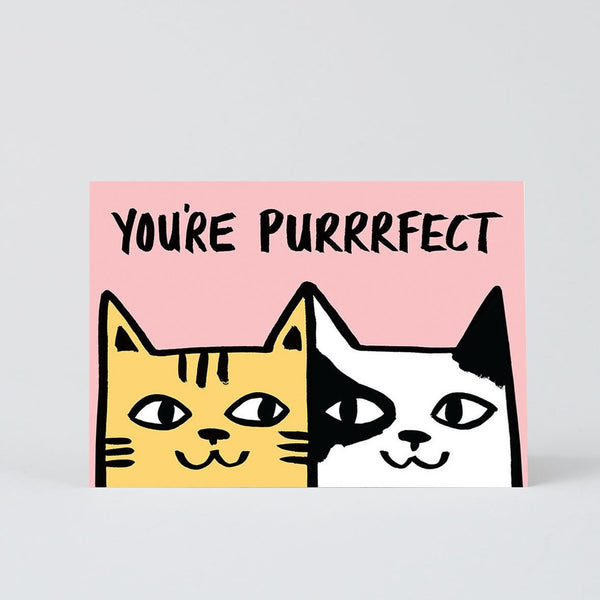 You're Purrrfect