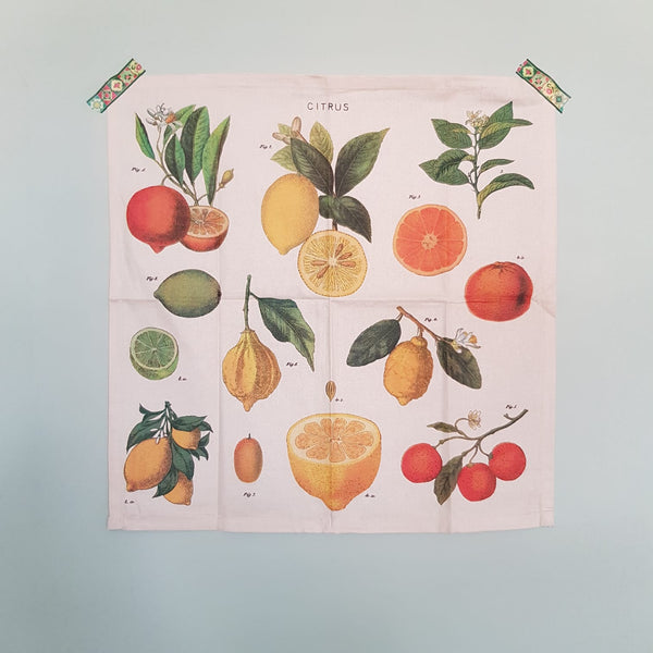 Set of 4 Vintage Citrus Print Napkin