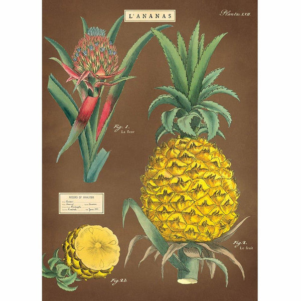 Pineapple Poster with Frame