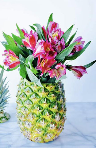 Pineapple of Peruvian Lilies