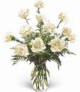 Dozen White Carnation