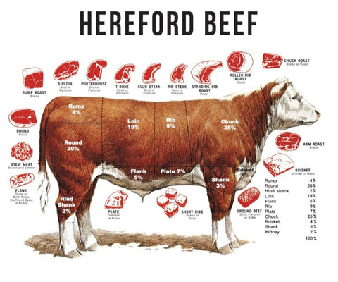 Hereford Beef Chart