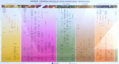 Official Genealogy Poster by the Osmotheque & French Society of Perfumers – Masculine/Unisex Version