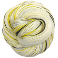 Knitcircus Yarns: Flight of the Bumblebee 100g Speckled Handpaint skein, Spectacular, ready to ship yarn