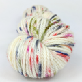 Knitcircus Yarns: Big Top Birthday 100g Speckled Handpaint skein, Ringmaster, ready to ship yarn