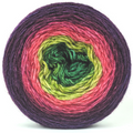 Knitcircus Yarns: Just Beet It 100g Panoramic Gradient, Breathtaking BFL, ready to ship yarn