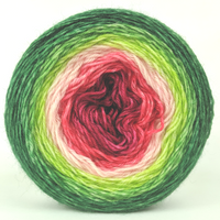 Knitcircus Yarns: Watermelon 100g Panoramic Gradient, Breathtaking BFL, ready to ship yarn