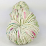 Knitcircus Yarns: Sleigh Ride 100g Speckled Handpaint skein, Ringmaster, ready to ship yarn