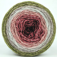 Knitcircus Yarns: Apple of My Pie 100g Panoramic Gradient, Trampoline, ready to ship yarn