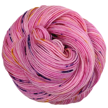 Knitcircus Yarns: Center of Attention 100g Speckled Handpaint skein, Spectacular, ready to ship yarn