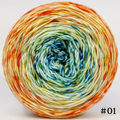Knitcircus Yarns: Step Right Up 100g Impressionist Gradient, Trampoline, choose your cake, ready to ship yarn