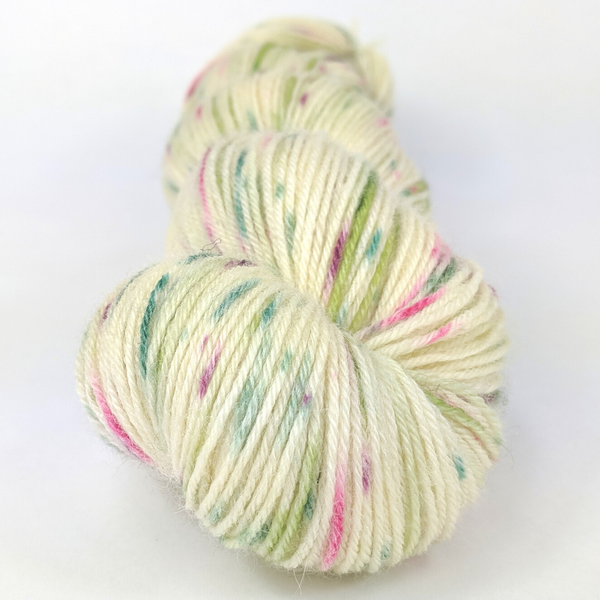 Knitcircus Yarns: Sleigh Ride 100g Speckled Handpaint skein, Breathtaking BFL, ready to ship yarn
