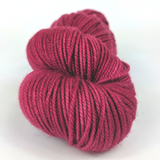 Cast Away Big Top Big Shop Limited Edition 100g Kettle-Dyed Semi-Solid skein, Magnificent, ready to ship