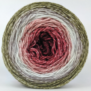 Knitcircus Yarns: Apple of My Pie 100g Panoramic Gradient, Flying Trapeze, ready to ship yarn