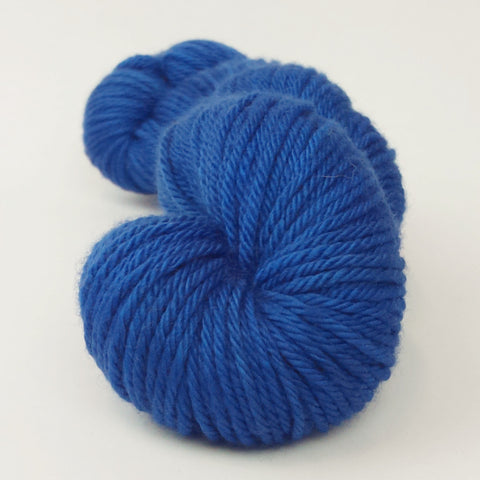 Two of a Kind Blue 100g Kettle-Dyed Semi-Solid skein, Ringmaster, ready to ship