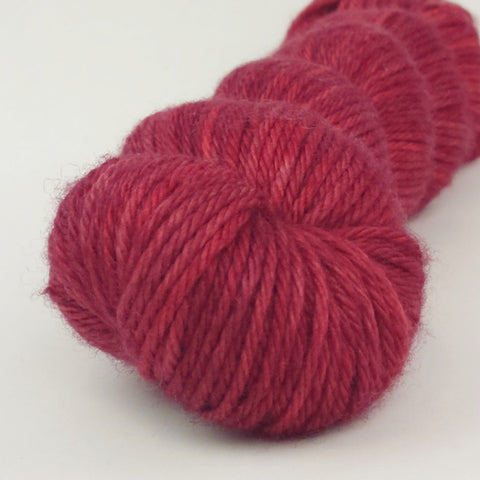 Penny Lane 100g Kettle-Dyed Semi-Solid skein, Ringmaster, ready to ship