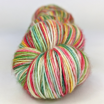 Knitcircus Yarns: To Get to the Other Side 100g Handpainted skein, Spectacular, ready to ship yarn