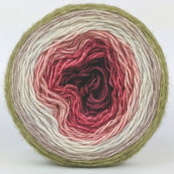 Knitcircus Yarns: Apple of My Pie 100g Panoramic Gradient, Breathtaking BFL, ready to ship yarn