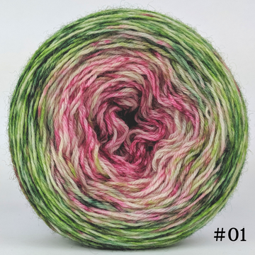 Knitcircus Yarns: Holly and Ivy 100g Impressionist Gradient, Breathtaking BFL, choose your cake, ready to ship yarn