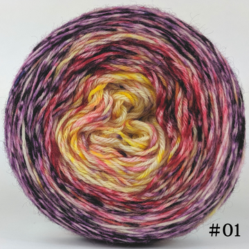 Knitcircus Yarns: Ms. Frizzle 100g Impressionist Gradient, Breathtaking BFL, choose your cake, ready to ship yarn