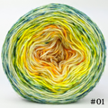 Knitcircus Yarns: Here Comes the Sun 100g Impressionist Gradient, Breathtaking BFL, choose your cake, ready to ship yarn