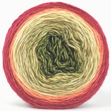 Knitcircus Yarns: Spice Spice Baby 100g Panoramic Gradient, Breathtaking BFL, ready to ship yarn
