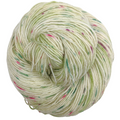 Knitcircus Yarns: Sleigh Ride 100g Speckled Handpaint skein, Spectacular, ready to ship yarn