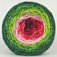 Knitcircus Yarns: Watermelon 150g Panoramic Gradient, Ringmaster, ready to ship yarn - SALE