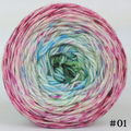 Knitcircus Yarns: Knit Your Best Life 100g Impressionist Gradient, Opulence, choose your cake, ready to ship yarn