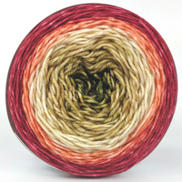 Knitcircus Yarns: Spice Spice Baby 100g Panoramic Gradient, Greatest of Ease, ready to ship yarn