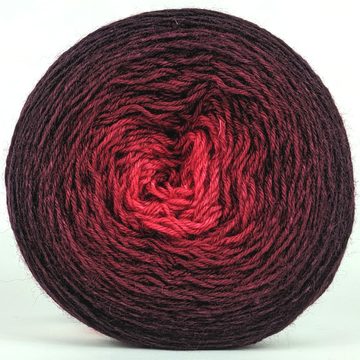 Knitcircus Yarns: Vampire Boyfriend 150g Chromatic Gradient, Breathtaking BFL, ready to ship yarn