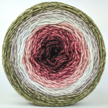 Knitcircus Yarns: Apple of My Pie 150g Panoramic Gradient, Flying Trapeze, ready to ship yarn