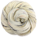 Knitcircus Yarns: Fox in the Henhouse 100g Speckled Handpaint skein, Spectacular, ready to ship yarn