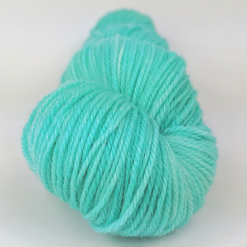 Knitcircus Yarns: Crowd Surfing 100g Kettle-Dyed Semi-Solid skein, Flying Trapeze, ready to ship yarn
