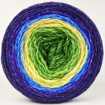 Knitcircus Yarns: Forget Me Knot 100g Panoramic Gradient, Breathtaking BFL, ready to ship yarn