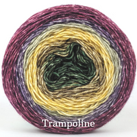 Knitcircus Yarns: Plum's the Word Panoramic Gradient, dyed to order yarn
