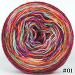 Knitcircus Yarns: Backyard Bouquet 100g Modernist, Breathtaking BFL, choose your cake, ready to ship yarn