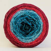 Knitcircus Yarns: Birds of a Feather 100g Panoramic Gradient, Trampoline, ready to ship yarn