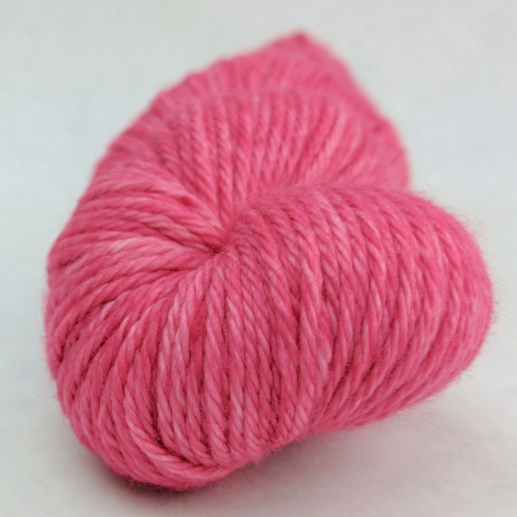 C'est La Vie 100g Kettle-Dyed Semi-Solid skein, Ringmaster, ready to ship