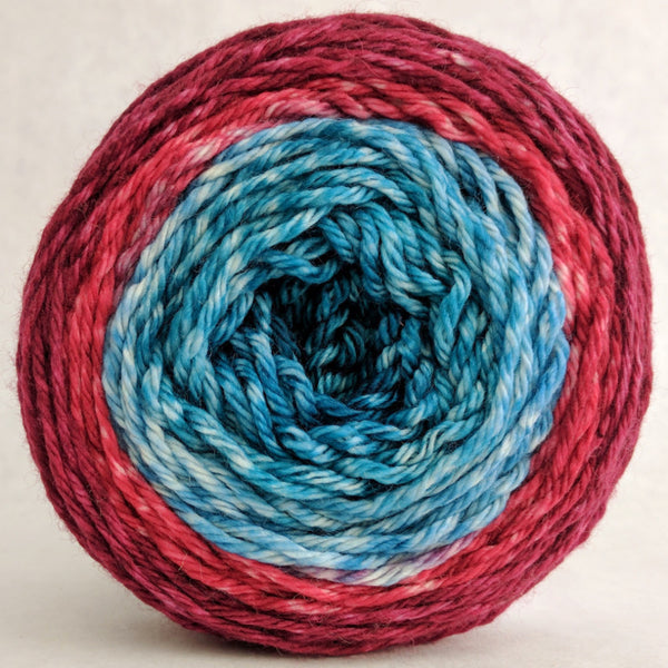 Knitcircus Yarns: Birds of a Feather 100g Panoramic Gradient, Ringmaster, ready to ship yarn