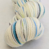 Knitcircus Yarns: Growing Like A Weed 100g Speckled Handpaint skein, Opulence, ready to ship yarn