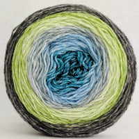 Knitcircus Yarns: Growing Like A Weed 100g Panoramic Gradient, Opulence, ready to ship yarn