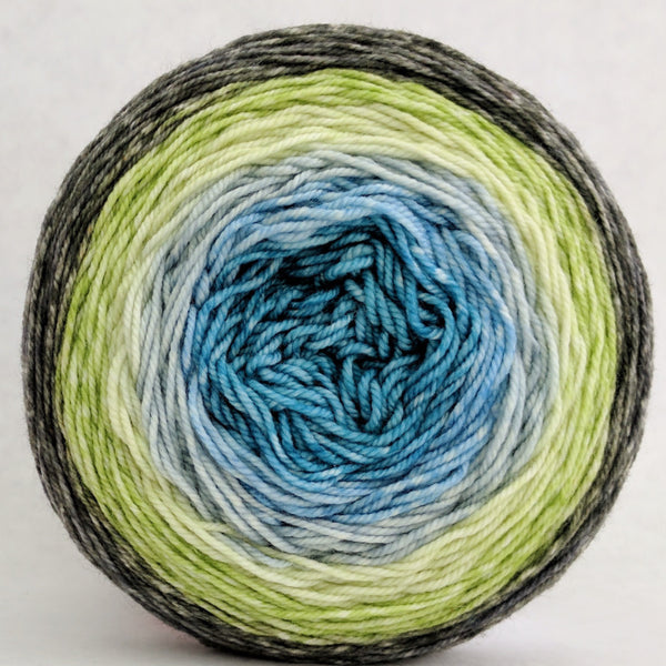 Knitcircus Yarns: Growing Like A Weed 100g Panoramic Gradient, Trampoline, ready to ship yarn