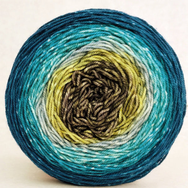 Knitcircus Yarns: Thanks for All the Fish 100g Panoramic Gradient, Trampoline, ready to ship yarn