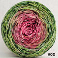 Knitcircus Yarns: Holly and Ivy 100g Impressionist Gradient, Trampoline, choose your cake, ready to ship yarn