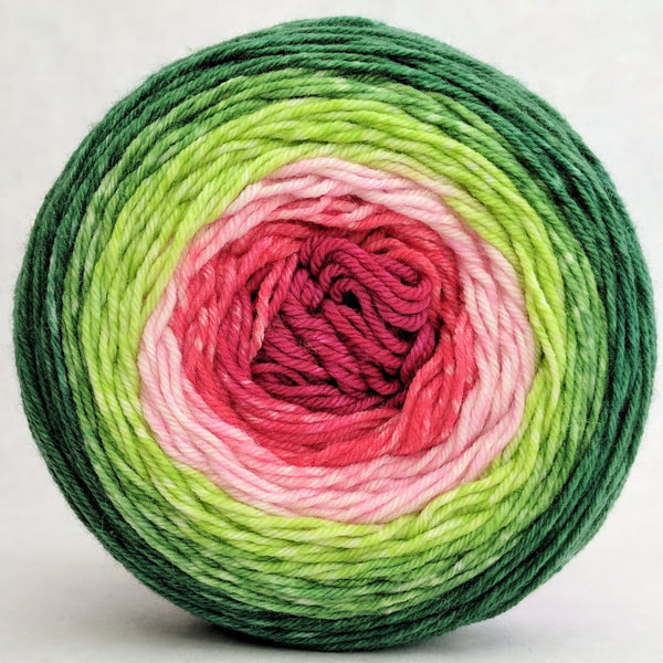 Knitcircus Yarns: Watermelon 100g Panoramic Gradient, Greatest of Ease, ready to ship yarn