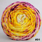 Sunshine Daydream 100g Impressionist Gradient, Ringmaster, choose your cake, ready to ship