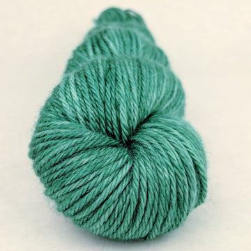 Knitcircus Yarns: Shrubbery! 100g Kettle-Dyed Semi-Solid skein, Ringmaster, ready to ship - SALE